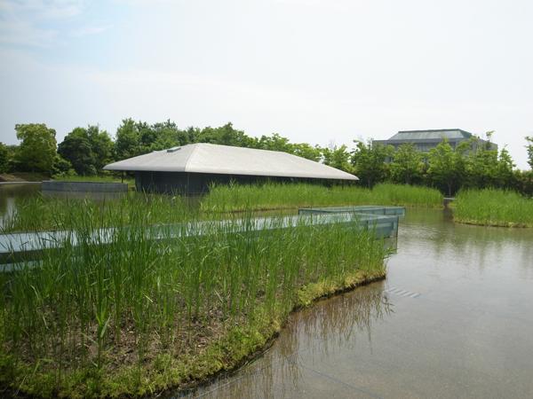 佐川美術館茶室
